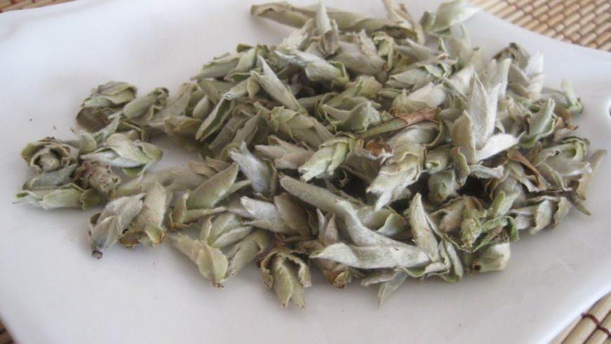 Я Бао. Чай из почек старых пуэрных деревьев