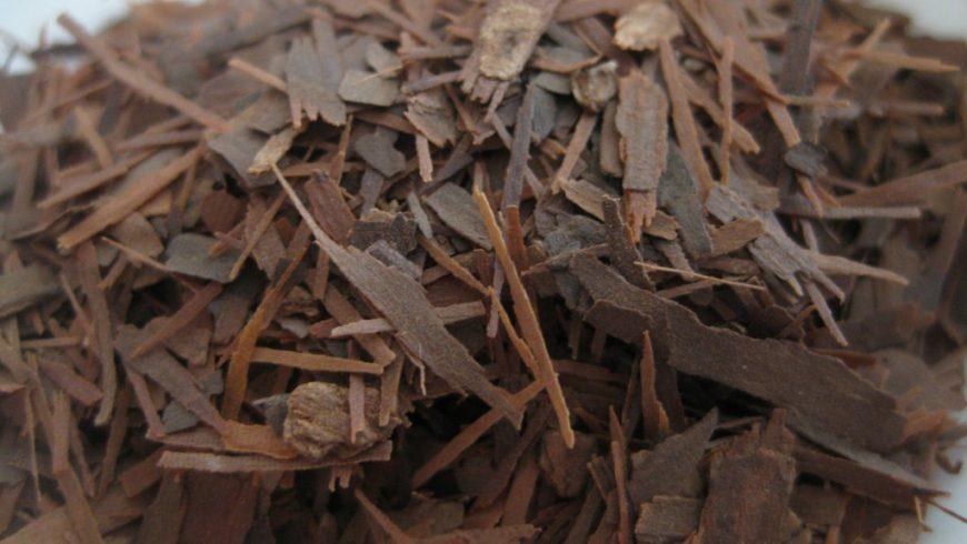 Лапачо. Южноамериканский чай