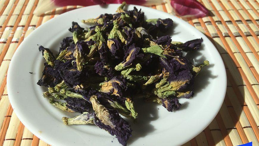 Анчан. Синий чай из Тайланда